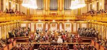Cena y Concierto: Orquesta Mozart de Viena