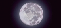 The Moon Is Like My Heart : Orchestre Chinois de Hong Kong